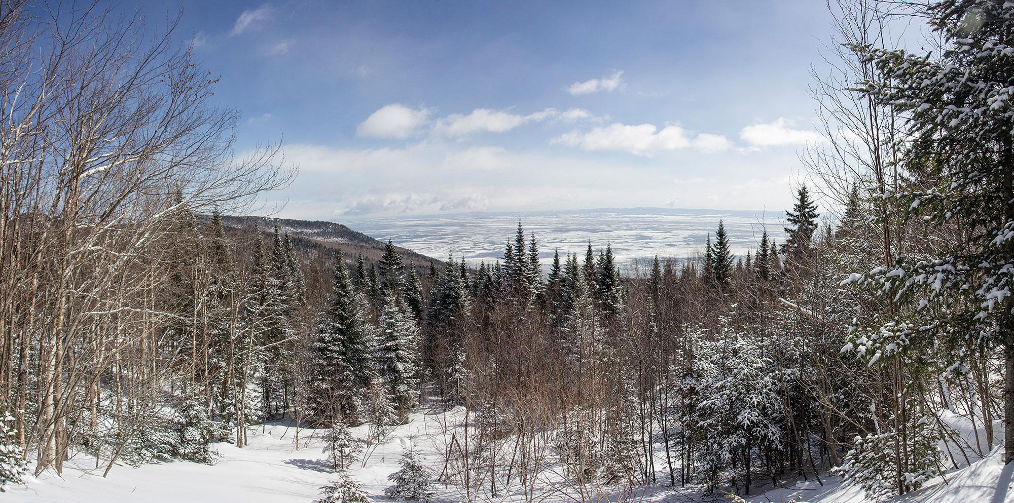 Le Sentier des Caps en hiver