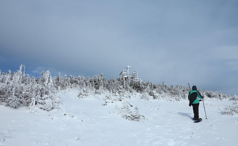 Le mont Gosford