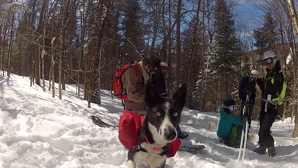 Ski-de-printemps-2k15_02